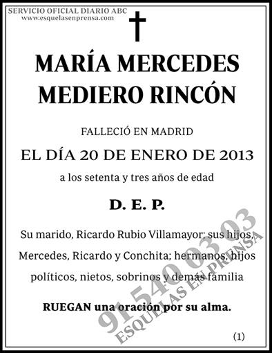María Mercedes Mediero Rincón